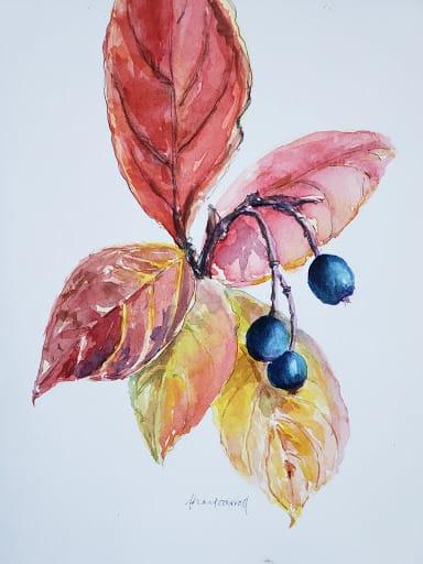 Hot Press or Cold Press Watercolor - Image 1