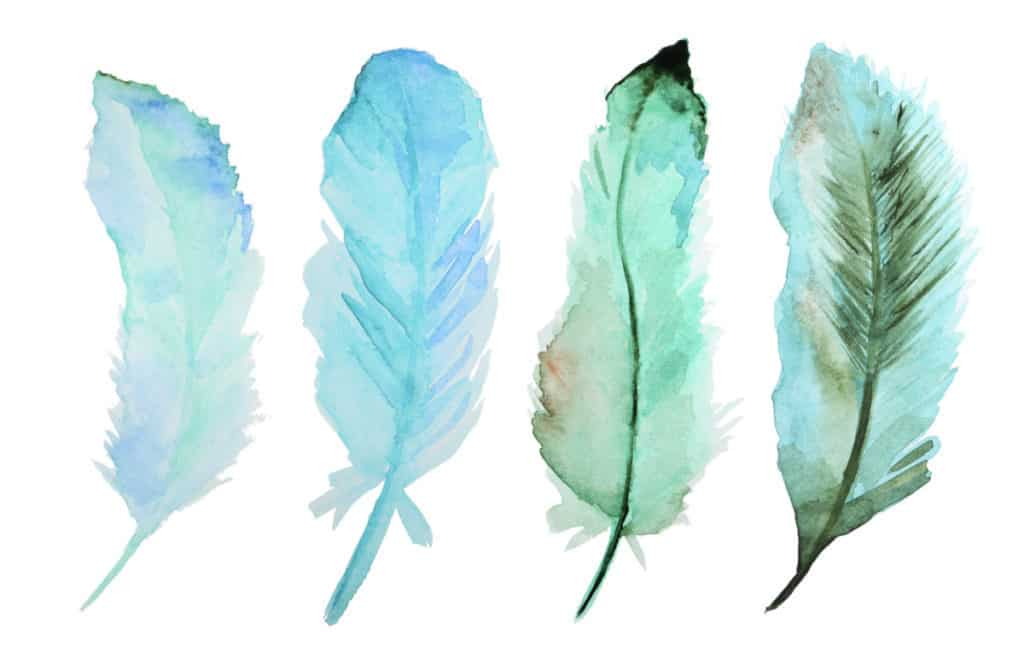 feathers Best watercolor brush pens very create.com