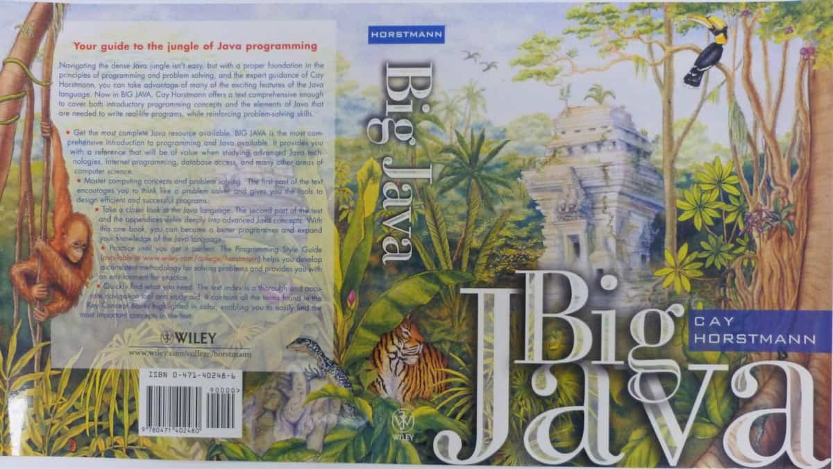 book big java suzy cyr verycreate.com creator spotlight verycreate.com