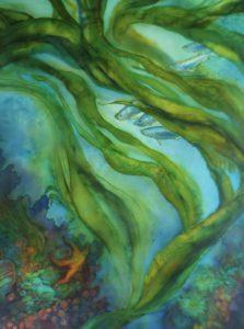 kelp garden suzy cyr verycreate.com creator spotlight verycreate.com