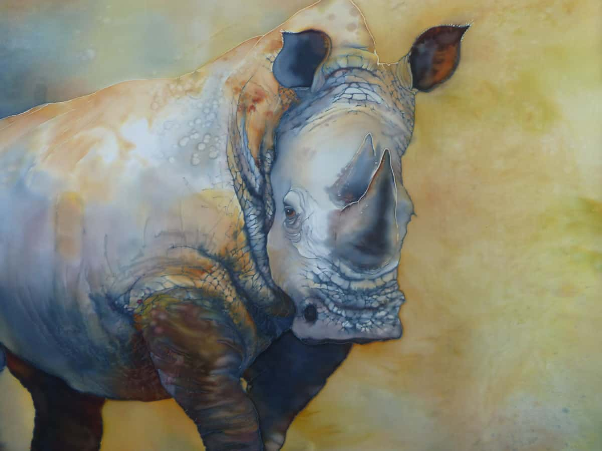 Rhino suzy cyr verycreate.com creator spotlight verycreate.com