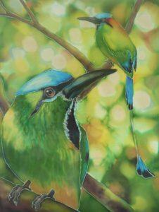 motmot birds Suzy Cyr verycreate.com Creator Spotlight verycreate.com