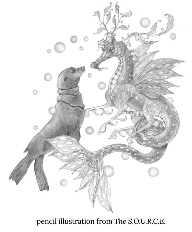 seal seahorse pencil jo gershman verycreate.com creator spotlight verycreate.com